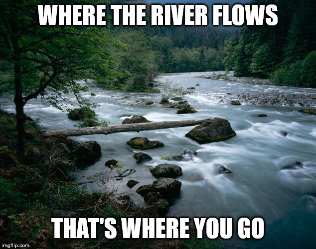 river | WHERE THE RIVER FLOWS THAT'S WHERE YOU GO | image tagged in river | made w/ Imgflip meme maker