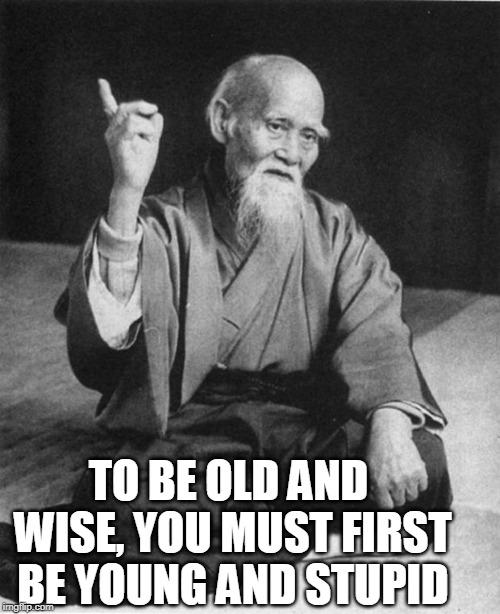 Wise Master | TO BE OLD AND WISE, YOU MUST FIRST BE YOUNG AND STUPID | image tagged in wise master | made w/ Imgflip meme maker