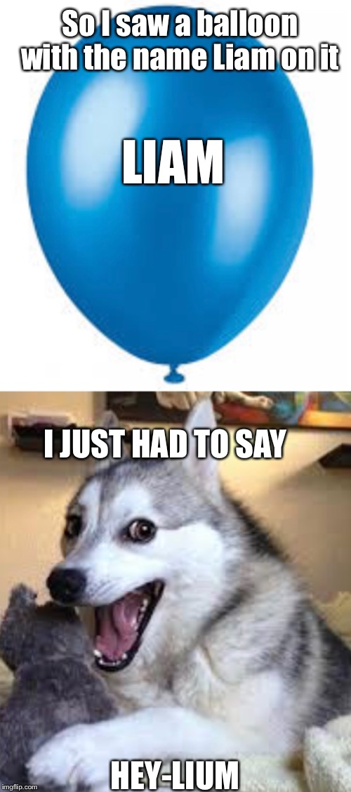 A Balloon joke | LIAM HEY-LIUM So I saw a balloon with the name Liam on it I JUST HAD TO SAY | image tagged in bad pun dog,balloons,balloon,dogs,helium | made w/ Imgflip meme maker