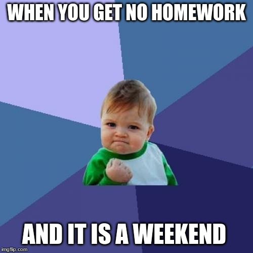 Success Kid |  WHEN YOU GET NO HOMEWORK; AND IT IS A WEEKEND | image tagged in memes,success kid | made w/ Imgflip meme maker