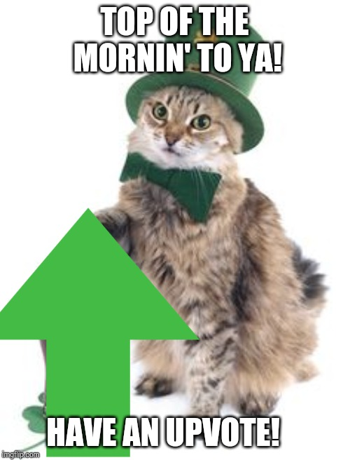 TOP OF THE MORNIN' TO YA! HAVE AN UPVOTE! | made w/ Imgflip meme maker