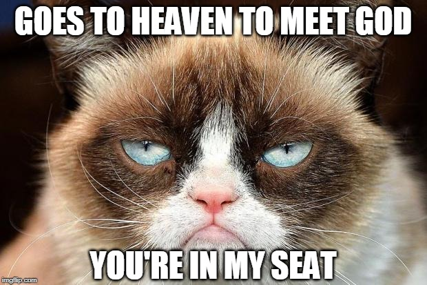 Grumpy Cat Not Amused |  GOES TO HEAVEN TO MEET GOD; YOU'RE IN MY SEAT | image tagged in memes,grumpy cat not amused,grumpy cat | made w/ Imgflip meme maker