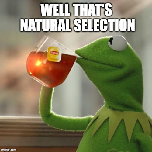 Natural Section | WELL THAT'S NATURAL SELECTION | image tagged in memes,kermit the frog | made w/ Imgflip meme maker
