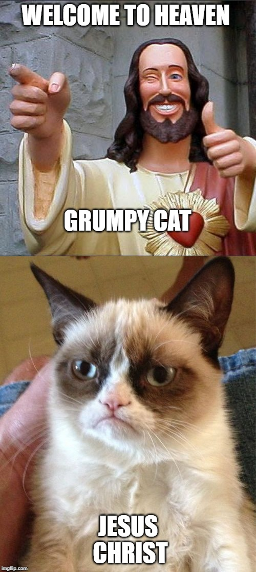 WELCOME TO HEAVEN JESUS CHRIST GRUMPY CAT | image tagged in memes,buddy christ,grumpy cat | made w/ Imgflip meme maker