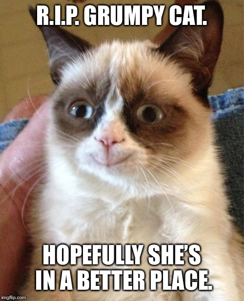 Grumpy Cat Happy Meme | R.I.P. GRUMPY CAT. HOPEFULLY SHE'S IN A BETTER PLACE. | image tagged in memes,grumpy cat happy,grumpy cat | made w/ Imgflip meme maker