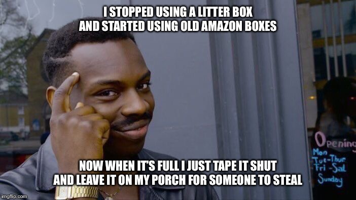 Roll Safe Think About It |  I STOPPED USING A LITTER BOX AND STARTED USING OLD AMAZON BOXES; NOW WHEN IT'S FULL I JUST TAPE IT SHUT AND LEAVE IT ON MY PORCH FOR SOMEONE TO STEAL | image tagged in memes,roll safe think about it,amazon,cat litter,steal,mail | made w/ Imgflip meme maker