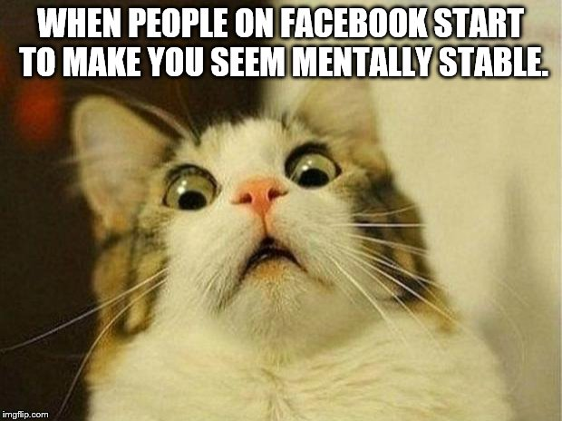 Scared Cat | WHEN PEOPLE ON FACEBOOK START TO MAKE YOU SEEM MENTALLY STABLE. | image tagged in memes,scared cat | made w/ Imgflip meme maker
