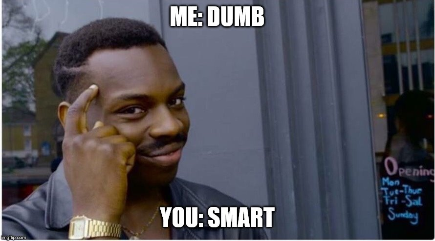 Roll safe | ME: DUMB YOU: SMART | image tagged in roll safe | made w/ Imgflip meme maker