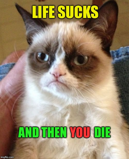 Grumpy Cat Meme | LIFE SUCKS AND THEN            DIE YOU | image tagged in memes,grumpy cat | made w/ Imgflip meme maker