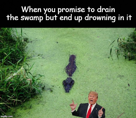 When you promise to drain the swamp but end up drowning in it COVELL BELLAMY III | image tagged in trump drowning the swamp | made w/ Imgflip meme maker
