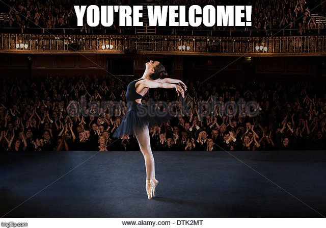 ballerina | YOU'RE WELCOME! | image tagged in ballerina | made w/ Imgflip meme maker