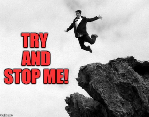 Man Jumping Off a Cliff | TRY AND STOP ME! | image tagged in man jumping off a cliff | made w/ Imgflip meme maker