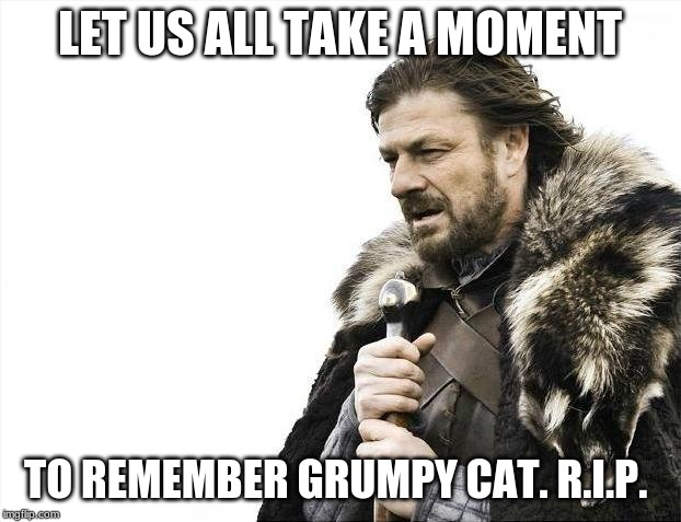 Brace Yourselves X is Coming Meme | LET US ALL TAKE A MOMENT TO REMEMBER GRUMPY CAT. R.I.P. | image tagged in memes,brace yourselves x is coming | made w/ Imgflip meme maker