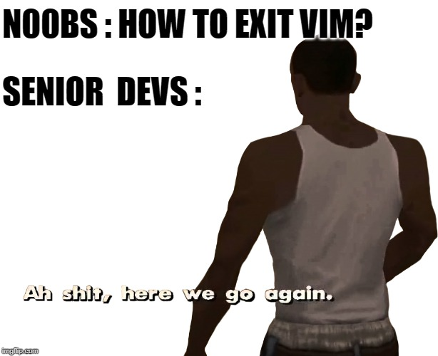 Noobs using Vim Editor | N00BS : HOW TO EXIT VIM? SENIOR  DEVS : | image tagged in oh shit here we go again,here we go again,coding | made w/ Imgflip meme maker