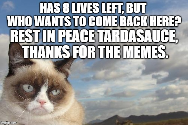 Grumpy Cat Sky Meme | HAS 8 LIVES LEFT, BUT WHO WANTS TO COME BACK HERE? REST IN PEACE TARDASAUCE, THANKS FOR THE MEMES. | image tagged in memes,grumpy cat sky,grumpy cat | made w/ Imgflip meme maker