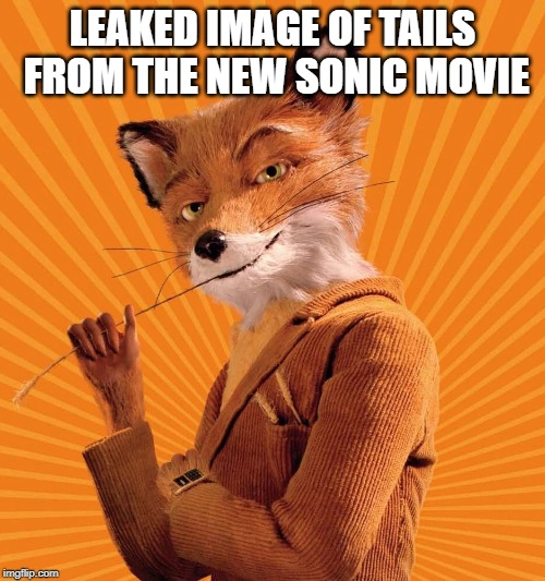 Fantastic Mr Sonic? | LEAKED IMAGE OF TAILS FROM THE NEW SONIC MOVIE | image tagged in tails,memes,fantastic mr fox,sonic movie | made w/ Imgflip meme maker