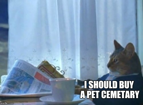 I Should Buy A Boat Cat | I SHOULD BUY A PET CEMETARY | image tagged in memes,i should buy a boat cat,grumpy cat,death,cemetery | made w/ Imgflip meme maker