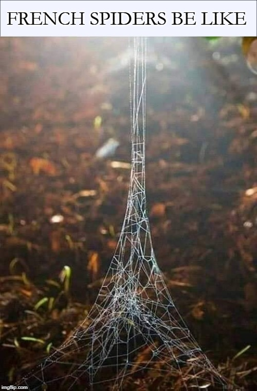 The Nope Tower | FRENCH SPIDERS BE LIKE | image tagged in memes,spiders,nope,france,paris,eiffel tower | made w/ Imgflip meme maker