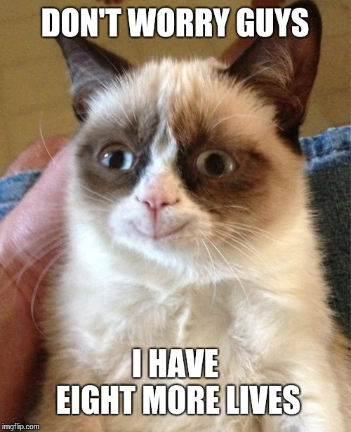 Grumpy Cat Happy |  DON'T WORRY GUYS; I HAVE EIGHT MORE LIVES | image tagged in memes,grumpy cat happy,grumpy cat | made w/ Imgflip meme maker