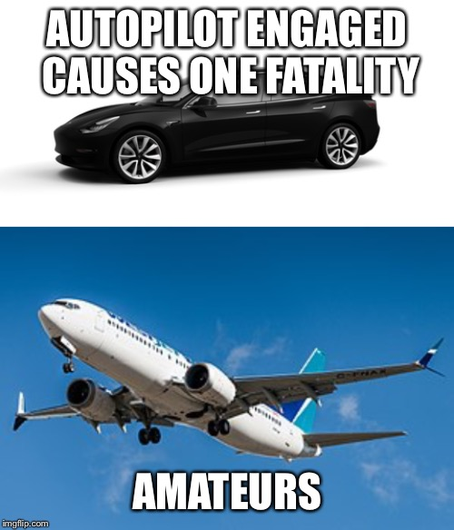 Autofail | AUTOPILOT ENGAGED CAUSES ONE FATALITY AMATEURS | image tagged in crashes | made w/ Imgflip meme maker