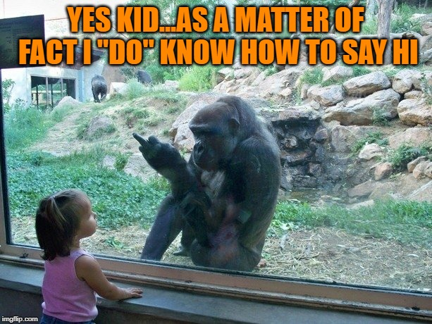 "Can you say Hi?  Zoo Week May 12-18 a Dankmaster546 and 1forpeace Event |  YES KID...AS A MATTER OF FACT I ""DO"" KNOW HOW TO SAY HI 