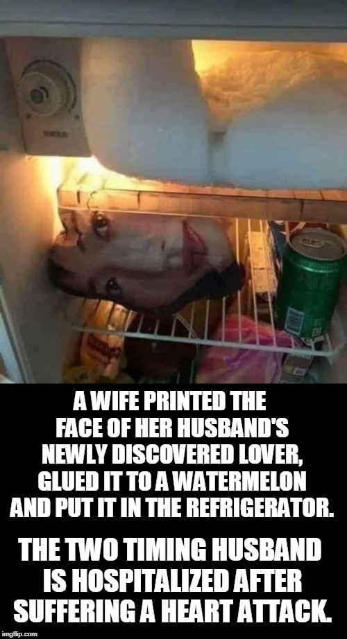 So much better than divorce court! | A WIFE PRINTED THE FACE OF HER HUSBAND'S NEWLY DISCOVERED LOVER, GLUED IT TO A WATERMELON AND PUT IT IN THE REFRIGERATOR. THE TWO TIMING HUS | image tagged in two timing,cheating husband,severed head,trolling,just divorced,memes | made w/ Imgflip meme maker