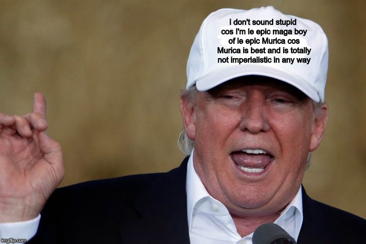 Donald Trump Blank MAGA Hat | i don't sound stupid cos I'm le epic maga boy of le epic Murica cos Murica is best and is totally not imperialistic in any way | image tagged in donald trump blank maga hat | made w/ Imgflip meme maker