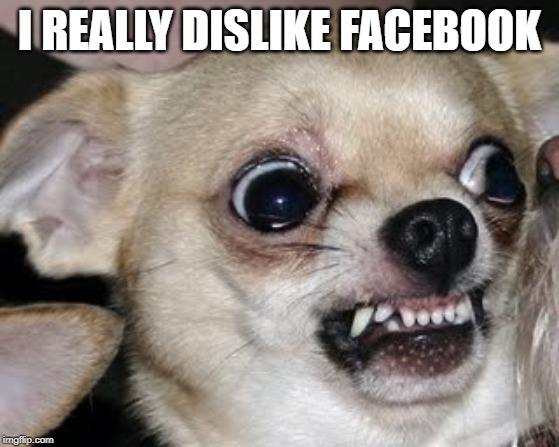 angry dog | I REALLY DISLIKE FACEBOOK | image tagged in angry dog | made w/ Imgflip meme maker