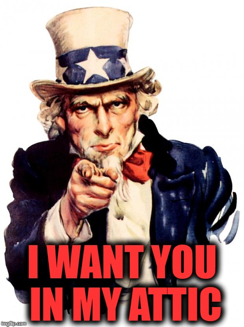 Uncle Sam Meme | I WANT YOU IN MY ATTIC | image tagged in memes,uncle sam | made w/ Imgflip meme maker