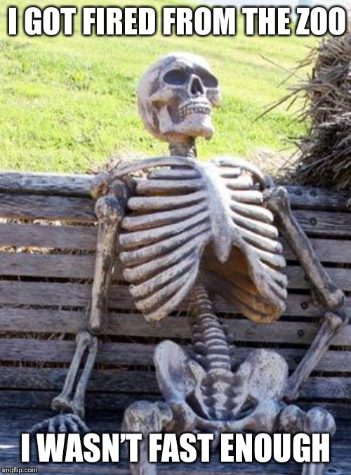 Waiting Skeleton Meme | I GOT FIRED FROM THE ZOO I WASN'T FAST ENOUGH | image tagged in memes,waiting skeleton | made w/ Imgflip meme maker