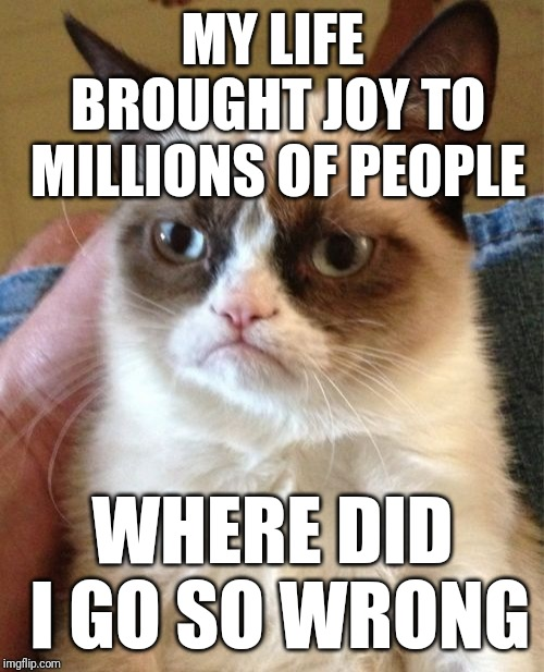 Grumpy Cat Meme | MY LIFE BROUGHT JOY TO MILLIONS OF PEOPLE WHERE DID I GO SO WRONG | image tagged in memes,grumpy cat | made w/ Imgflip meme maker