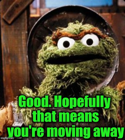 Oscar the Grouch | Good. Hopefully that means you're moving away | image tagged in oscar the grouch | made w/ Imgflip meme maker