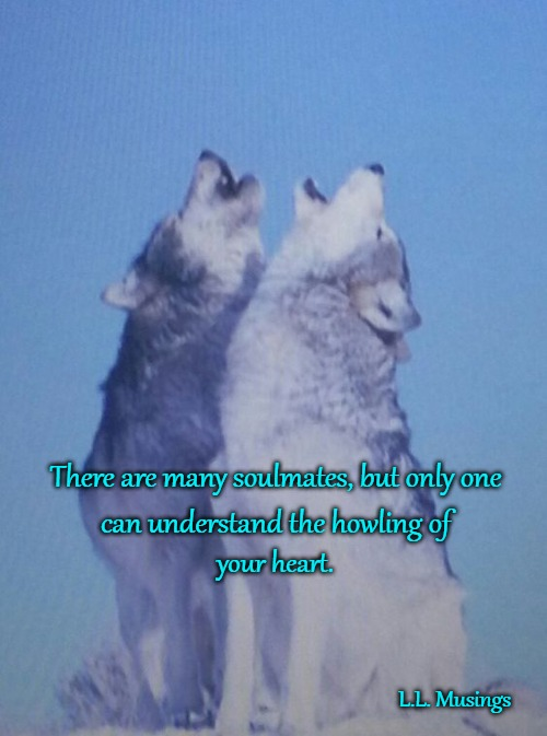 Wolves | There are many soulmates, but only one L.L. Musings can understand the howling of your heart. | image tagged in wolves,animals,native american,native americans,tribe,wolf | made w/ Imgflip meme maker