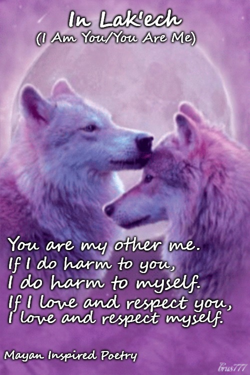 Wolf Wisdom | You are my other me. Mayan Inspired Poetry If I do harm to you, I do harm to myself. If I love and respect you, I love and respect myself. I | image tagged in wolves,animals,native american,native americans,tribe,american indians | made w/ Imgflip meme maker