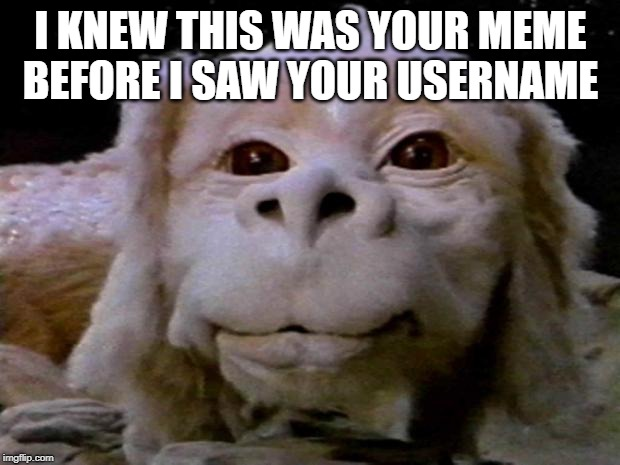 falcor | I KNEW THIS WAS YOUR MEME BEFORE I SAW YOUR USERNAME | image tagged in falcor | made w/ Imgflip meme maker