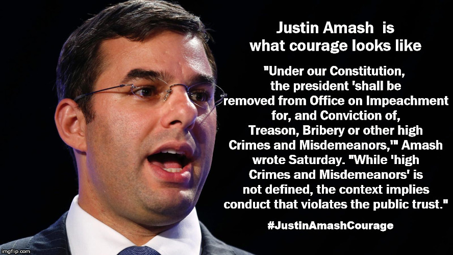 Justin Amash, is what courage looks like | #JustinAmashCourage | image tagged in justinamashcourage,justin amash,justin amash republican,donald trump,congress,republican conressman | made w/ Imgflip meme maker