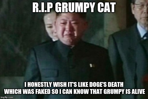 Kim Jong Un Sad | R.I.P GRUMPY CAT I HONESTLY WISH IT'S LIKE DOGE'S DEATH WHICH WAS FAKED SO I CAN KNOW THAT GRUMPY IS ALIVE | image tagged in memes,kim jong un sad | made w/ Imgflip meme maker