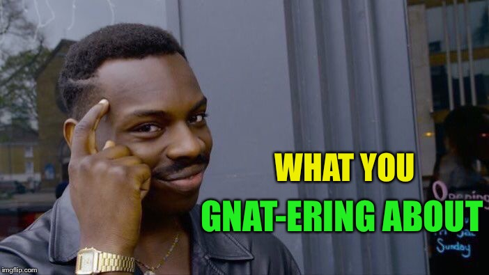 Roll Safe Think About It Meme | WHAT YOU GNAT-ERING ABOUT | image tagged in memes,roll safe think about it | made w/ Imgflip meme maker