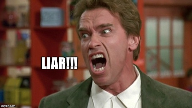 LIAR!!! | image tagged in arnold schwarzenegger screaming kindergarten cop | made w/ Imgflip meme maker