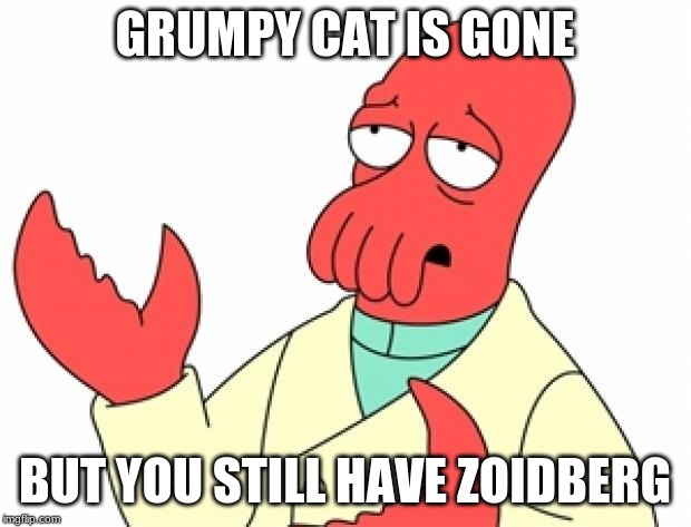 Zoidberg needs a cat form. | GRUMPY CAT IS GONE BUT YOU STILL HAVE ZOIDBERG | image tagged in why not zoidberg,grumpy cat | made w/ Imgflip meme maker