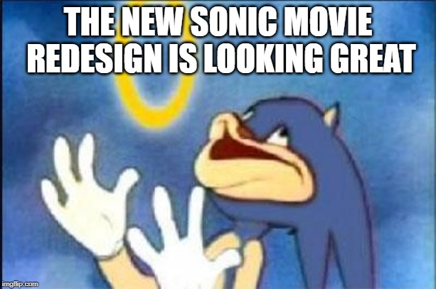 Sonic movie redesign | THE NEW SONIC MOVIE REDESIGN IS LOOKING GREAT | image tagged in sonic derp | made w/ Imgflip meme maker