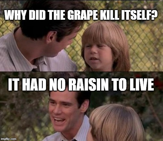 Thats Just Something X Say Meme | WHY DID THE GRAPE KILL ITSELF? IT HAD NO RAISIN TO LIVE | image tagged in memes,thats just something x say | made w/ Imgflip meme maker