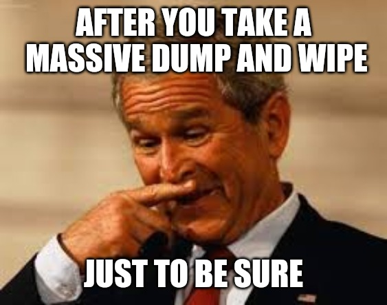 AFTER YOU TAKE A MASSIVE DUMP AND WIPE JUST TO BE SURE | image tagged in memes,george bush,bad smell | made w/ Imgflip meme maker