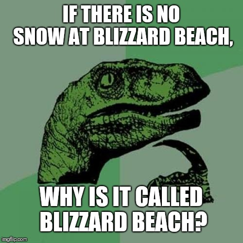 There's a reason they made it in Florida... | IF THERE IS NO SNOW AT BLIZZARD BEACH, WHY IS IT CALLED BLIZZARD BEACH? | image tagged in memes,philosoraptor,disney world,blizzard,florida,sunny | made w/ Imgflip meme maker