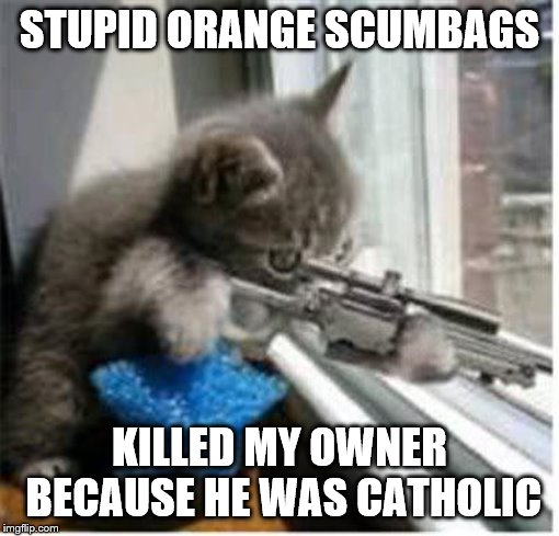 Cats with Guns in Belfast | STUPID ORANGE SCUMBAGS KILLED MY OWNER BECAUSE HE WAS CATHOLIC | image tagged in cats with guns,northern ireland,cat memes,political memes | made w/ Imgflip meme maker