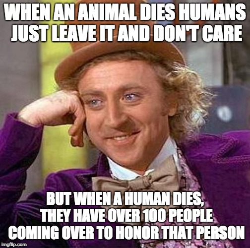 Is it fair? | WHEN AN ANIMAL DIES HUMANS JUST LEAVE IT AND DON'T CARE BUT WHEN A HUMAN DIES, THEY HAVE OVER 100 PEOPLE COMING OVER TO HONOR THAT PERSON | image tagged in memes,creepy condescending wonka,animals,death | made w/ Imgflip meme maker