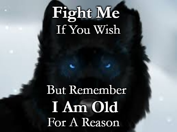 Wolf Wisdom | Fight Me For A Reason If You Wish But Remember I Am Old | image tagged in wolves,animals,native americans,tribe,twolf,native american | made w/ Imgflip meme maker