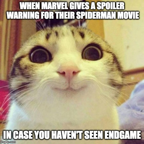 Smiling Cat |  WHEN MARVEL GIVES A SPOILER WARNING FOR THEIR SPIDERMAN MOVIE; IN CASE YOU HAVEN'T SEEN ENDGAME | image tagged in memes,smiling cat,avengers endgame,spoiler alert,funny | made w/ Imgflip meme maker