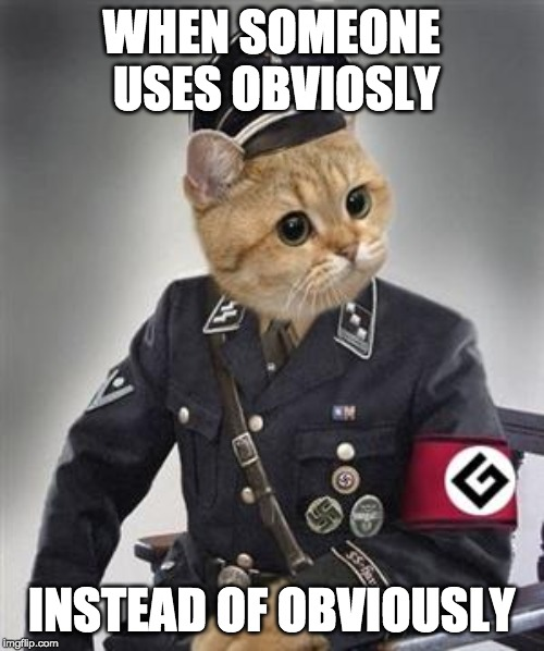 WHEN SOMEONE USES OBVIOSLY INSTEAD OF OBVIOUSLY | image tagged in grammar nazi cat | made w/ Imgflip meme maker