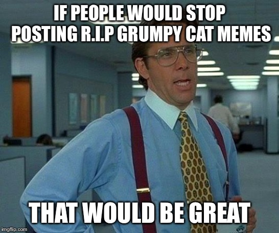 That Would Be Great | IF PEOPLE WOULD STOP POSTING R.I.P GRUMPY CAT MEMES THAT WOULD BE GREAT | image tagged in memes,that would be great | made w/ Imgflip meme maker